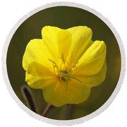 Yellow Wild Flower Round Beach Towel