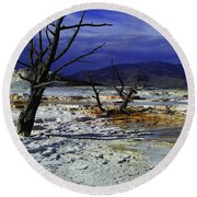 Yellowstone National Park 6 Round Beach Towel