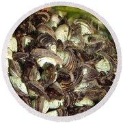 Zebra Mussels Dreissena Polymorpha Round Beach Towel