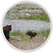 Black Bear Family Round Beach Towel
