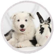 Puppy And Rabbit Round Beach Towel