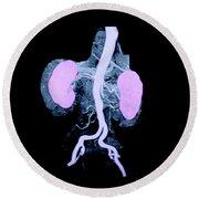 Abdominal Aorta And Kidneys Round Beach Towel