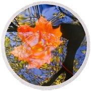 Autumn Leaf On The Water Round Beach Towel