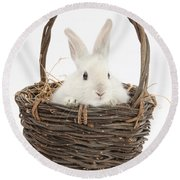 Bunny In A Basket Round Beach Towel