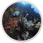 Colorful Reef Scene With Coral Round Beach Towel