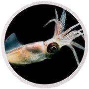 Eye Flash Squid Round Beach Towel