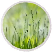 Green Grass Round Beach Towel