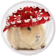 Guinea Pig Wearing A Hat Round Beach Towel