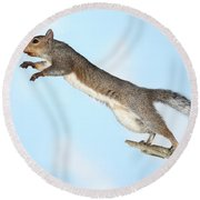 Jumping Gray Squirrel Round Beach Towel by Ted Kinsman