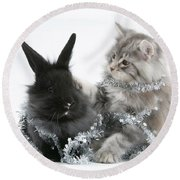 Kitten And Rabbit Getting Into Tinsel Round Beach Towel by Mark Taylor
