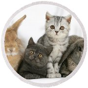 Kittens And Rabbits Round Beach Towel