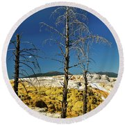 Mammoth Upper Terrace Round Beach Towel
