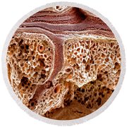 Mouse Lung, Sem Round Beach Towel by Science Source