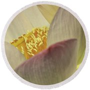 Nelumbo 'pink And Yellow' Round Beach Towel