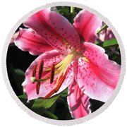 Oriental Lily Named Tiber Round Beach Towel