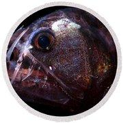 Pacific Viperfish Round Beach Towel