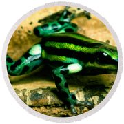 Pasco Poison Frog Round Beach Towel