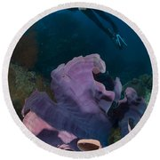 Purple Elephant Ear Sponge With Diver Round Beach Towel