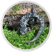 Slimy Salamander Round Beach Towel