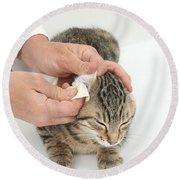 Vet And Kitten Round Beach Towel