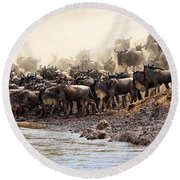 Wildebeest Before The Crossing Round Beach Towel