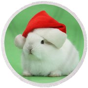 Young White Rabbit Wearing A Christmas Round Beach Towel