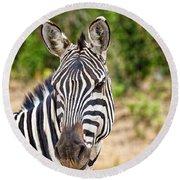 Zebras In The Masai Mara Round Beach Towel