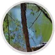 21- King Of The Swamp Round Beach Towel