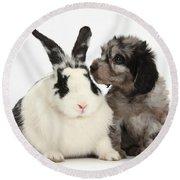 Puppy And Rabbit Round Beach Towel
