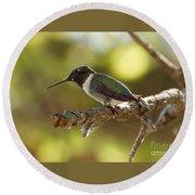 Hummingbird Round Beach Towel