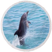 Atlantic Bottlenose Dolphin Round Beach Towel