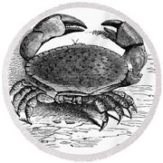 Crab Round Beach Towel