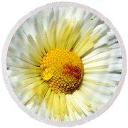 Daisy Flower Round Beach Towel
