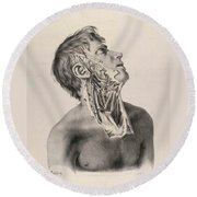 Historical Anatomical Illustration Round Beach Towel