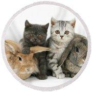Kittens And Rabbits Round Beach Towel