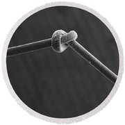 Knot In Human Hair, Sem Round Beach Towel