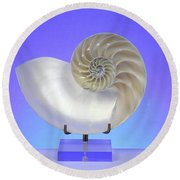 Logarithmic Spiral Round Beach Towel by Photo Researchers, Inc.