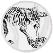 Megatherium, Extinct Ground Sloth Round Beach Towel