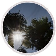 Palm Trees Round Beach Towel