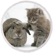 Rabbit And Kitten Round Beach Towel