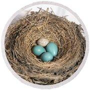 Robins Nest And Cowbird Egg Round Beach Towel