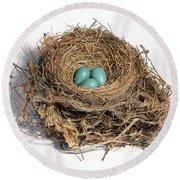 Robins Nest With Eggs Round Beach Towel