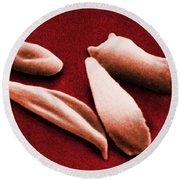 Sickle Red Blood Cells Round Beach Towel
