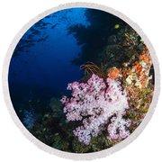 Soft Coral Seascape, Fiji Round Beach Towel