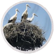 3 Storks In The Nest. Lithuania Round Beach Towel