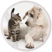 Tabby Kitten & Great Dane Pup Round Beach Towel