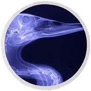X-ray Of A Mallard Duck Head Round Beach Towel