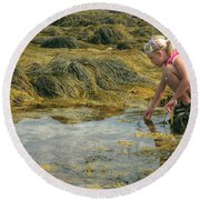 Young Girl Exploring A Maine Tidepool Round Beach Towel