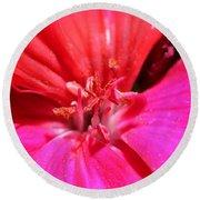 Zonal Geranium Named Tango Neon Purple Round Beach Towel