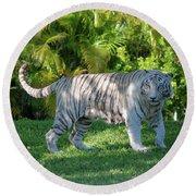 35- White Bengal Tiger Round Beach Towel